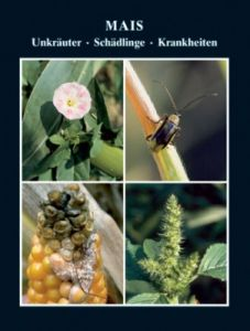 Mais - Unkräuter, Schädlinge, Krankheiten